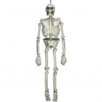 Amscan 54 in. Halloween Life Size Skeleton