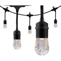 Enbrighten 24-Bulb 48 ft. Integrated LED Cafe String Lights, Black