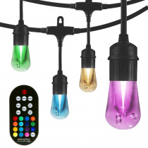 Enbrighten 24-bulb 48 ft. Vintage Seasons Integrated LED Color Changing Cafe String Lights, Black