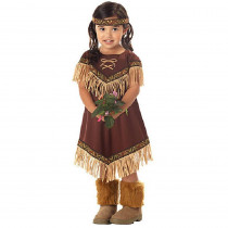 California Costume Collections Toddler Lil Indian Princess Costume