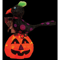 17 in. Sisal Lighted Pumpkin and Crow