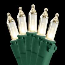 National Tree Company 50-Light Clear Bulb String Light Set