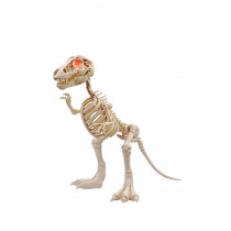 34 in. Animated T-Rex with LED Eyes