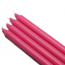Zest Candle 10 in. Hot Pink Straight Taper Candles (12-Set)
