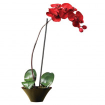 Nearly Natural 20 in. Holiday Phalaenopsis Orchid